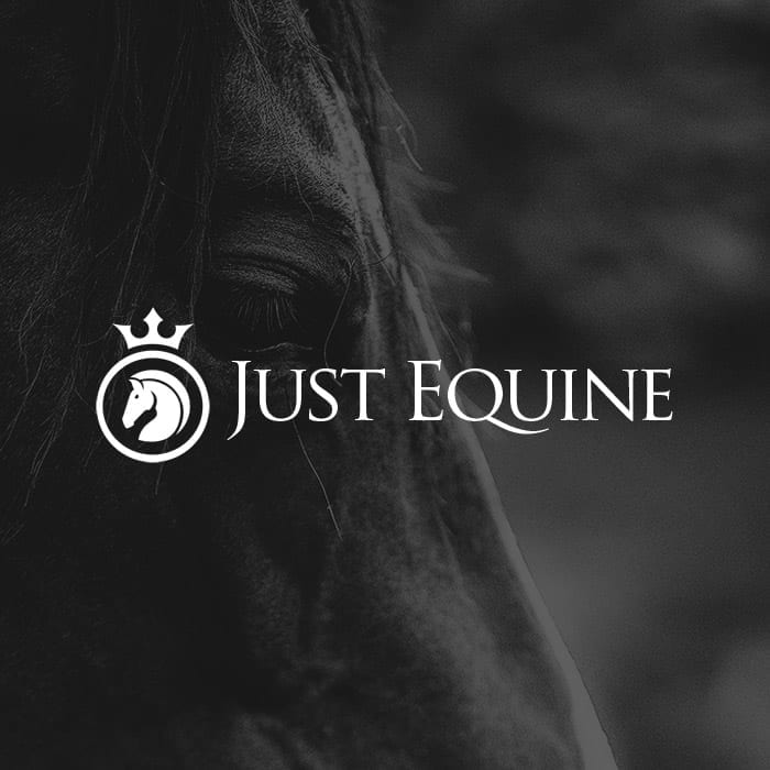 Lucy Hutchings Hunt & Co-case-study-thumbnail-just-equine-logo